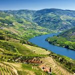 Opposition mounts to Australian company seeking licence to mine Douro wine lands